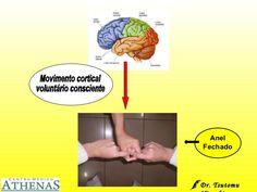 Movimento cortical  voluntário consciente Anel Fechado Dr. Tsutomu Higashi