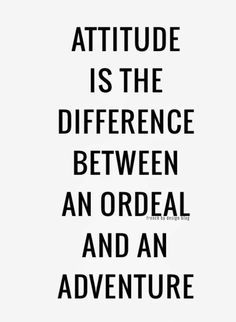 Choose adventure!