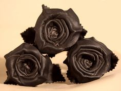 Black Leather Rose Bouquet 3 roses 3rd by LeatherNstuff on Etsy