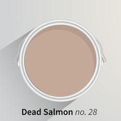 Pantone 436 Farrow And Ball Dead Salmon Pinterest
