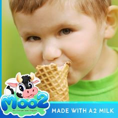 Regular milk that used in regular ice cream and yogurt contains both A1 and A2 beta-casein, but A2 milk contains only A2 beta-casein. Some studies indicate that A1 beta-casein may be harmful, and that A2 beta-casein is a safer choice.  Switch to Moo2 Ice Cream and Yogurt as healthy dessert alternative, made with pure A2 milk. Healthier choice!  #A2 #a2Milk #Milk #IceCream #Yogurt #Dessert