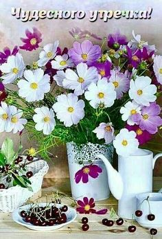 Good Morning, Plants, Pictures, Buen Dia, Bonjour, Plant, Good Morning Wishes, Planets