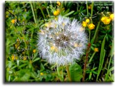"""""""Nature is the art of God eternal"""" quote from Dante on photo of dandelion seed head. Spiritual Quotes To Live By"""