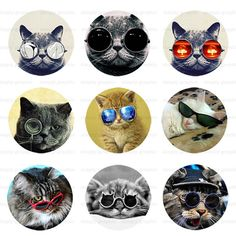 Cat with Glasses, Digital Collage Sheet, 1 inch Round Images, Bottle Caps, Pendants, Round Bezels, Instant Download, Embellishment s032