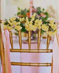 Bride/Groom Chairs? So lovely!