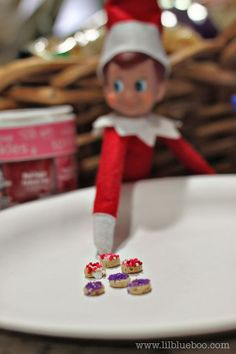 """Elf delivers tiny donuts made from cheerios + sprinkles... perhaps he also delivers some """"people"""" donuts"""