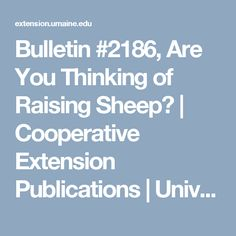 Bulletin #2186, Are You Thinking of Raising Sheep?   Cooperative Extension Publications   University of Maine