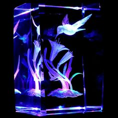 Hummingbirds S1 3D Laser Etched Crystal Display Light Base   eBay  I LOVE this!