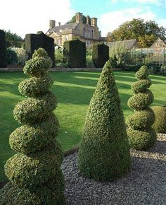 Topiary (from the latin topiarus (landscape gardener) is the horticultural art of creating living sculpture out of plants. The forms can range from the simple yet stylish geometric forms