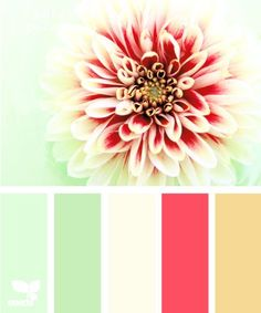 Painting color schemes...