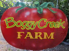 Boggy Creek Farm - An organic market farm in East Austin, famous for the fresh eggs AND the chickens! http://www.boggycreekfarm.com/