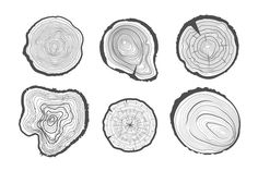 Vector collection of tree-rings. Here's what you get: - 1 EPS10 file plus raster version in High Quality 300 dpi (JPG) !! Please use Adobe Illustrator to work with these files !! Have a nice