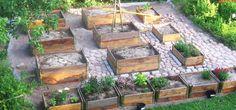 Rikkaruohot kuriin ja puutarha laatikkoon | Fiskars Verso
