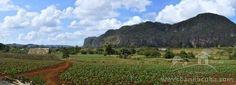 Vista Panorámica del Valle de Viñales