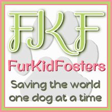 FurKidFosters - Saving the world one animal at a time.