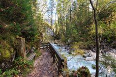 Der Zauberwald am Hintersee • Ein Ausflugsziel zum Wandern für die ganze Familie.