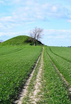 Mårhøj Gravhøj burial mound (3200 BC) in Martofte in Denmark