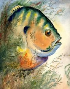 Watercolours of sea life by artist Barry Singer