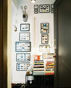 Gallery Wall With butterfly collections  - Lonny