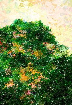 Nature Art Print  Evergreen  13 x 19    Open by AeropagitaPrints, $39.00