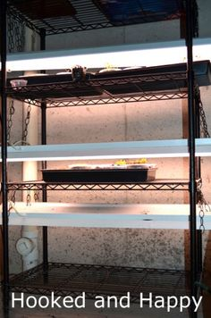Build Your Own Indoor Grow Lights - Hooked and Happy