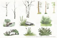 Watercolor Animals, Holiday Photos, Woodland Animals, Plants, Store, Holiday Pictures, Forest Animals, Vacation Pictures, Woodland Creatures