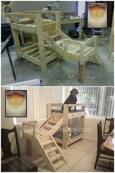 Doggie Bunk beds made out of Pallets. Diy Craft Projects
