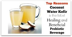 Top Reasons Coconut Water Kefir is the Most Healing and Beneficial Probiotic Beverage #probiotic #fermented