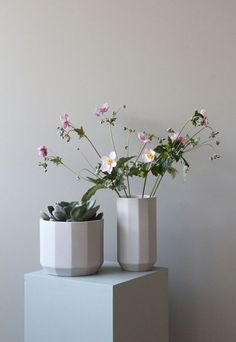 Stylish ceramics fro