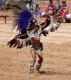 Native American Indian Eagle dancer