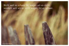 Mein Papa sagt...  Nicht weil es schwer ist, wagen wir es nicht, sondern weil wir es nicht wagen, ist es schwer. Seneca #Zitate #deutsch #quotes      Weisheiten & Zitate TÄGLICH NEU auf www.MeinPapasagt.de