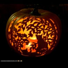 1000 Images About Jack O Lanterns On Pinterest