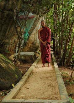 walking meditation path theravada - Google Search