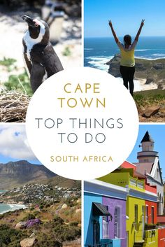 Cape Town is the perfect place to start a trip in South Africa. It balances a unique cultural destination with modern amenities and provides a startling backdrop that's hard to tear yourself away from - Table Mountain. But Cape Town is more than just Table Mountain! I spent four weeks there trying to see as much as possible and I've put together my favourite things to do that I think any first time visitor should see. Click the pin for more info!