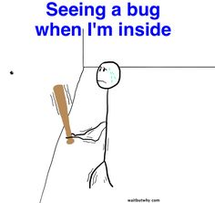 Why Bugs Ruin Everything   Wait But WhyWait But Why