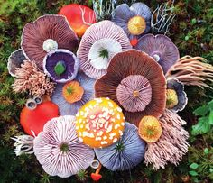 If You Need A Break, Just Take A Look At These 28 Calming Nature Photos This assortment of colourful fungi somehow soothes my stressed soul. If You Need A Break, Just Take A Look At These 28 Calming Nature Photos Mushroom Art, Mushroom Fungi, Mushroom Drawing, Mushroom Images, Mushroom Pictures, Mushroom Hunting, Colossal Art, Wow Art, Patterns In Nature