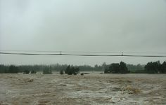 Sometimes a farmer needs to face disasters as well - It is noy always smooth sailing - This flood was is Swellendam