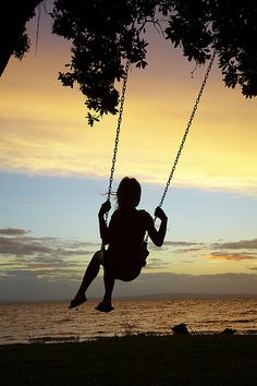 Young Boy on Rope Swing under Pohutukawa Tree at Sunset, Thames, Coromandel, North Island, New Zealand Swing Photography, Silhouette Art, Summer Breeze, Summer Nights, Beautiful World, Black And White Photography, The Dreamers, Sunrise, Scenery