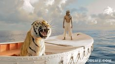 #LIFEOFPI movie review: #SurajSharma takes the cake and all the icing for sure! - Bollywood News & Gossip, Movie Reviews, Trailers & Videos at Bollywoodlife.com