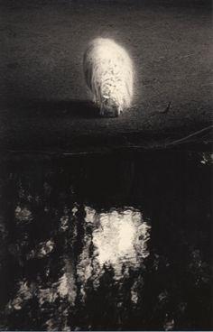 #1579, Masao Yamamoto