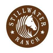 RARE: A horse logo that actually looks good.