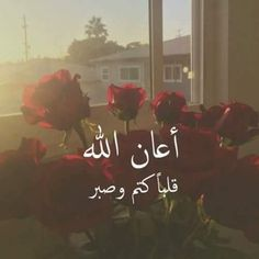Arabic Love Quotes, Arabic Words, Muslim Quotes, Islamic Quotes, Islamic Information, Islamic Prayer, Quote Citation, Islamic Wallpaper, Islamic Pictures