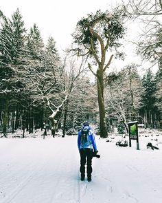 Mit @hiking_dany war ich auf dem Weg in Richtung Adam und Eva...ja es gibt sie wirklich und sie wohnen in der Eifel in Deutschland... Kennst du sie? ---------------  With @hiking_dany I was on my way to Adam and Eve.... yes they really exist and they live in the Eifel in Germany.... Do you know them?  #moodygram #hiking #weroamgermany #trees #hike #germanroamers #divine_forest #forestal #outdoors #mountain #trekking #wilderness #earthgrammer #diewocheaufinstagram #igersgermany…