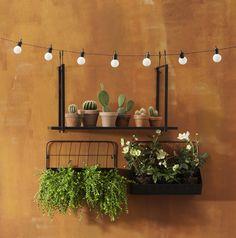 Groen tegen de muur. Ideaal voor op je balkon maar ook in je tuin. #wandrek #tuindecoratie #diy #voorjaarstuin #tuin