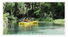 http://evergladesadventureecotours.webs.com/