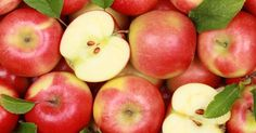 The USDA has approved the sale of non-browning, GMO apples which stay fresh for up to three weeks after being sliced, bitten, or bruised. Sources estimate there will be approximately 500 40-pound cases of these apples on 10 store shelves in the Midwest by February and March.
