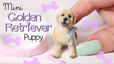 Miniature Golden Retriever Puppy Tutorial. SugarCharmShop shows how to make this incredible 1:12 scale dollhouse miniature dog. If only I had her sculpting talent. She has videos for other animals and things too, and they're all amazing.