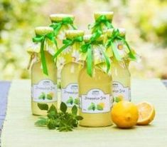Picture of Bottles with lemon balm syrup in the garden stock photo, images and stock photography. Lemon Balm, Cantaloupe, Homemade, Fruit, Bottle, Drinks, Creative, Food, Recipes