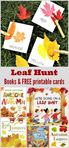 Going on a Leaf Hunt Free printable leaf scavenger hunt cards and books to take on a leaf hunt! Fun fall activity for toddlers, preschool and kindergarten kids - integrate STEM activities such as counting, color matching and more! Fall Activities For Toddlers, Thanksgiving Crafts For Toddlers, Easy Fall Crafts, Thanksgiving Activities, Kids Learning Activities, Stem Activities, Toddler Crafts, Preschool Kindergarten, Preschool Ideas