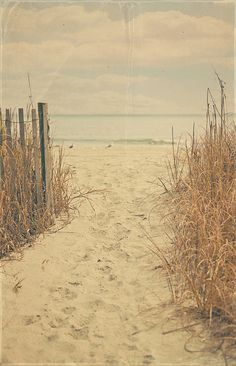 Vintage Beach by Angela Stansell